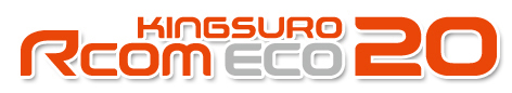 LOGO KINGSURO ECO20